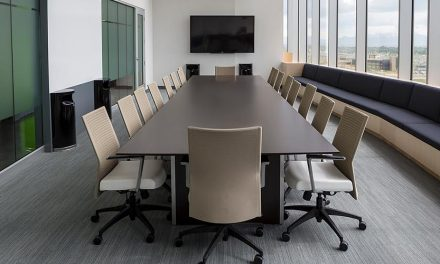DIVERSITY IN THE BOARD ROOM
