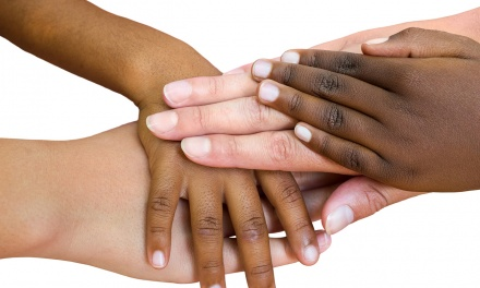 Diversity Champions or Racial Profilers