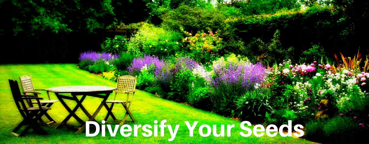 Diversify Your Seeds