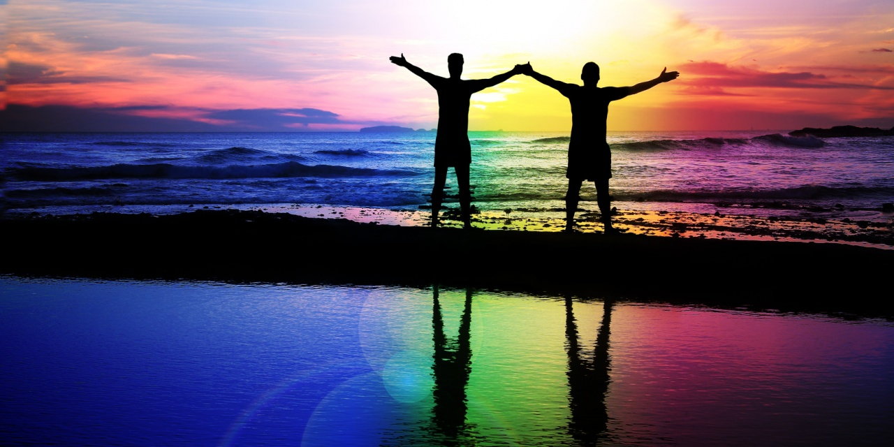 LGBT Allies Diversity Summit